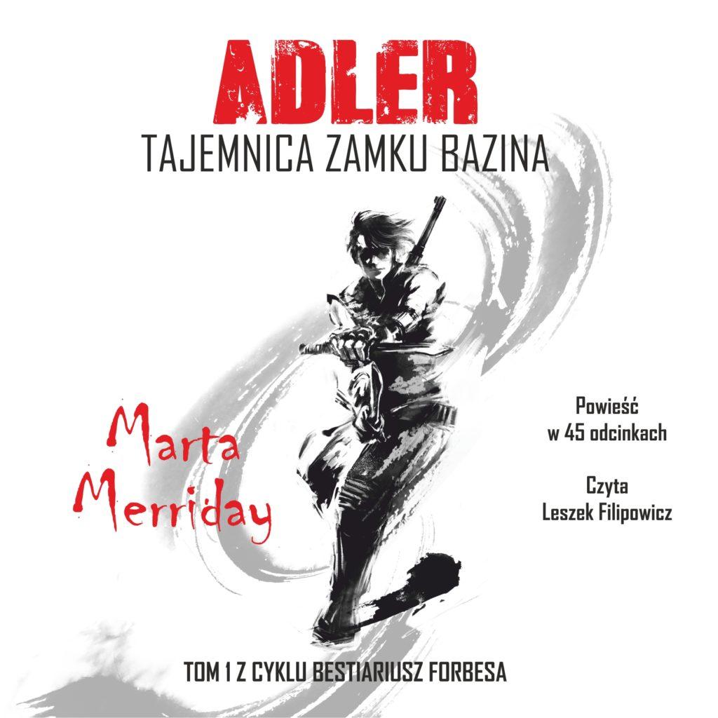 Audiobook Adler. Tajemnica zamku Bazina - okładka